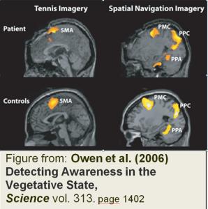 Owen et al. Science Paper